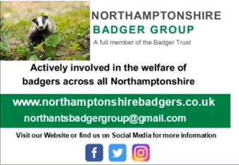 Badger group image